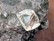 Lucara Diamond извлекла алмаз весом в 223 карата в Ботсване