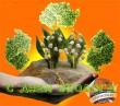 День эколога – День защитников окружающей среды